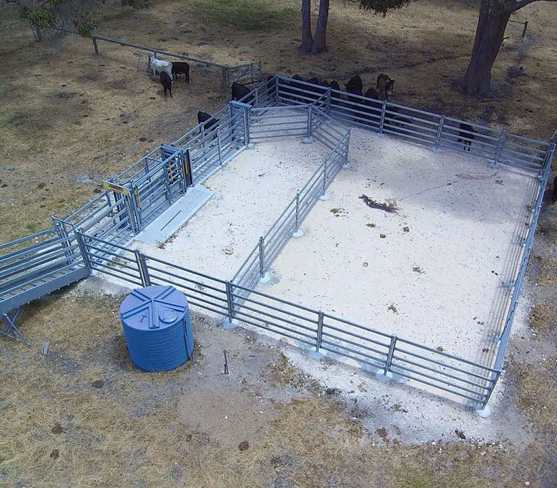 Cattle Yards- Small