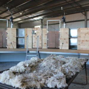 Shearing Shed Systems