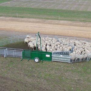 Single Axle Portable Sheep Yards