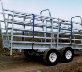 Mobile 4.8m Cattle Ramp