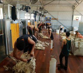 Modular Shearing Shed Fit Out- Narrogin