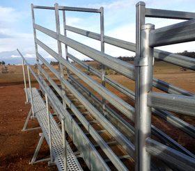 Cattle Yards- Boyup Brook